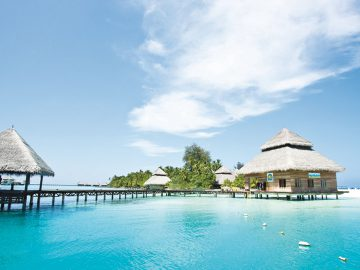 Holiday offers to Maldives & Ceylon